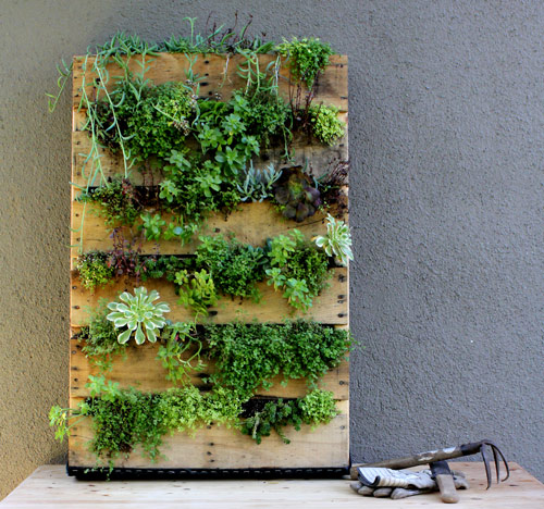 Creative Collections Vertical Gardens a project at a time