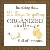 21dayorganizingchallenge175