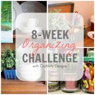8 week organizing challenge